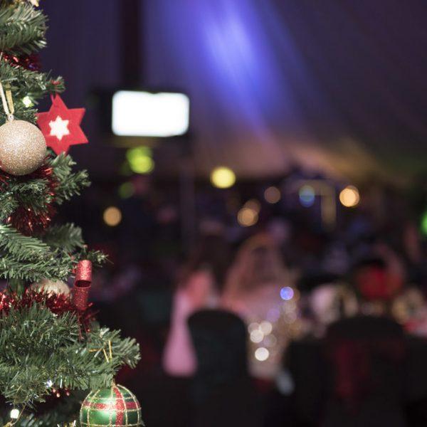 Julfest - Gran, Uthyrning